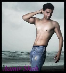 Amir Shah 009